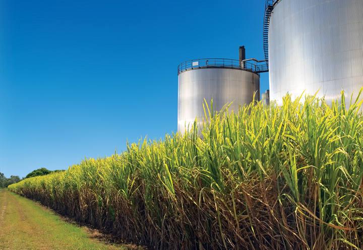 Etanol continua competitivo ante gasolina em cinco Estados brasileiros, diz ANP